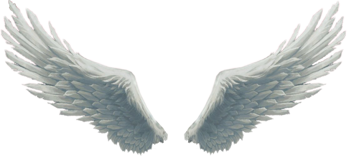 wings angel angelwings cool cute white fly flyinghigh angel wing clipart with halo angel wings clip art black and white
