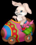 bunny easter freetoedit