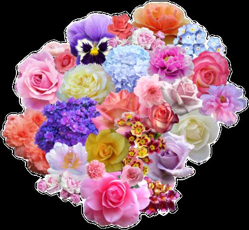 #png #edit #freetoedit #tumblr #overlay #flowers