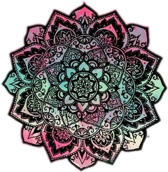 tumblr rosa galaxy galaxia flor freetoedit