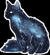 galaxycat freetoedit