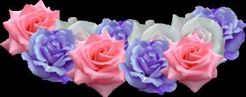 flower flores tiaragirl freetoedit