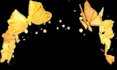 butterfly butterflyfilter freetoedit