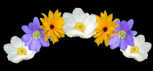 ftestickers flower flowers flowercrown