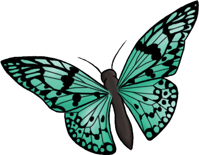 #butterfly #green