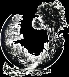 landscape sketched blackandwhite freetoedit