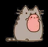 tumblr kawaii pusheen potato interesting