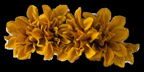 flowercrown flower yellow freetoedit