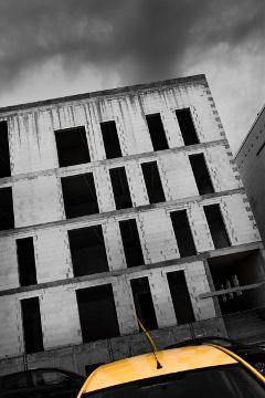 blackandwhite black streetphotography freetoedit