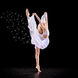 dance brynn brynnrumfallo flexibility gymnastics pcdancing freetoedit