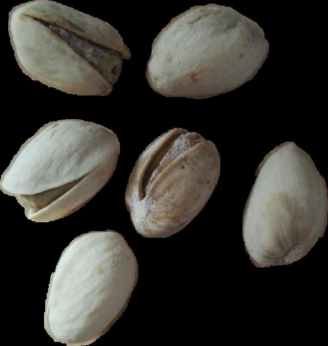 #pistachios #pistazien #pistachionut