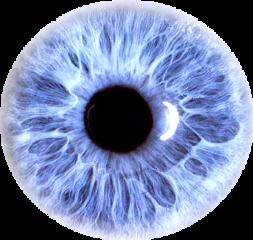 sticker eye freetoedit