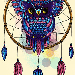 wdpdreamcatcher ловецснов сова owl myart