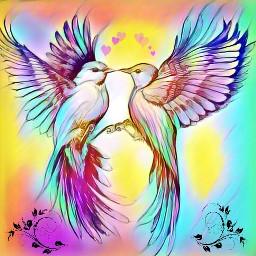 freetoedit love picsart birds