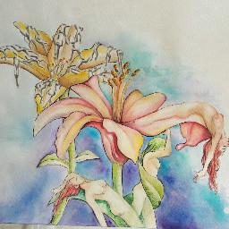 draw drawing art traditionalart mydrawing
