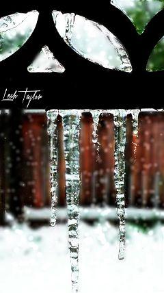 icicles springsnow snow