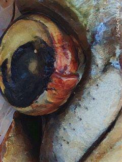 meekoleene fish art fish_eye 1