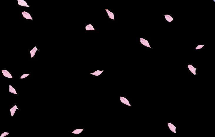 #sakura #petals #flower #floral #falling #floating #pink