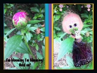 freetoedit enchantinglyexhausted bloomingflowers blossoms sisters