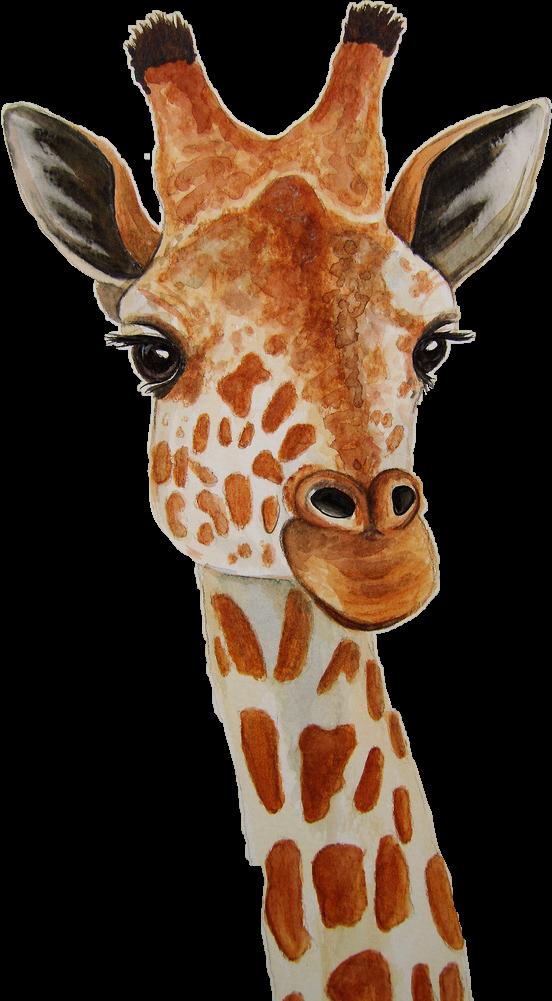 #giraffe #ftestickers