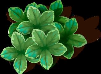 листва листья leaves freetoedit