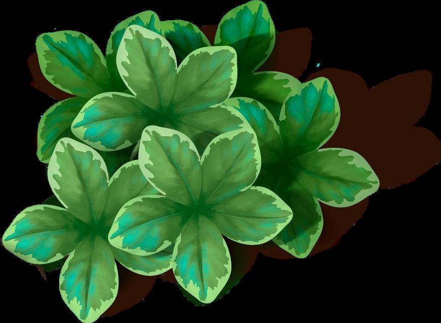 #листва #листья #leaves