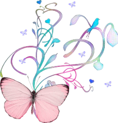 butter butterfly freetoedit