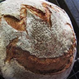dpcbaking baking dough oven step