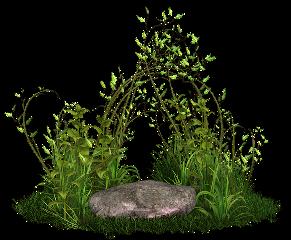 nature scenery landscape grass stone