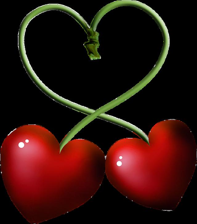 ##beautiful#rose#roses#flowersfollower#nature#design#animal#cat#love#Muslims#islam#hijabfashion#birthday#food#vintage#muslim#hijab#photography#cute#collage#beauty#birthday##baby #balloon #colorful #photography #бабочки #красота #любовь #лайк#котенок#FreeToEdit #hijabfashion