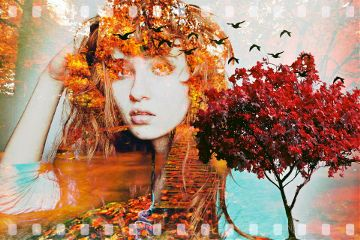 freetoedit autumn fall love
