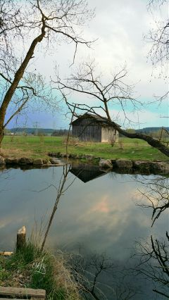 "reedit landscape ""baar"" calm @csefi"