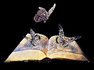 book livros conhecimento