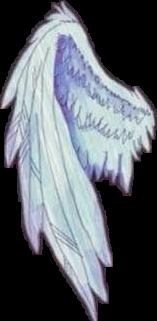 cute white wing wings angel