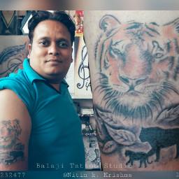 tigerlover tattooindiaculture colourtattoo tattooindia animallover