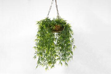 freetoedit green flower nature object